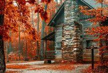 ~ November~