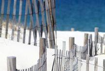 Zon Zee Strand / Mijn liefde voor het strand, de schelpen en de zee