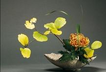 FLOWER ART / Imagination in its best