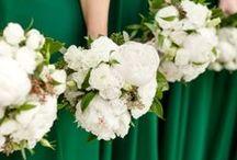 Color Blog. . . Elegant Emerald!