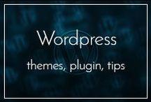 Wordpress / Wordpress tips, tricks, plugin and themes.