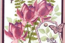 SU Lotus Blossoms
