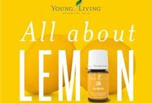 YL Products We Love! / Some of our favorite Young Living products and how we use them!