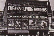 Sideshows, Carnivals & Circus Acts