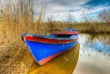 Barcas/Boats