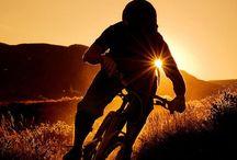 Biking / #biking#mtb#singletrack