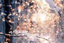 winter / by Alyssa W