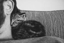 adorable  / by roxy cervantes