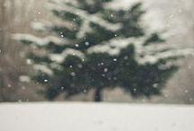snowfall / by roxy cervantes