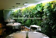 Jardin vertical, Alicante, Restaurante Els vents