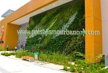 Jardin Vertical, centro comercial Armenia, Colombia / Jardin vertical centro comercial Armenia, Colombia; con nuestros colaboradores de GRONCOL