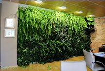 Jardin Vertical interior, despacho, Alicante