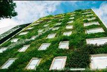 Fachada Vegetal, Bogota, Hotel B3 / Fachada vegetal del Hotel B3 en Bogota, realizada junto a nuestros compañeros de GRONCOL