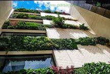 Jardín Vertical edificio parque empresarial Connecta G4-G5 Bogotá / Este proyecto consta de 3 jardines verticales; dos exteriores que tienen el mismo diseño, y un tercero interior. El edificio se encuentra ubicado en la parte occidental de Bogotá, y la orientación de los dos jardines exteriores es hacia el este y el oeste, entre ambos suman 198m2, en estos muros se instalaron 5346 plantas de 70 especies diferentes; no solamente siendo una verdadera obra de arte viva, sino con un altísimo valor botánico.  Otra obras más de Groncol y paisajismo Urbano.