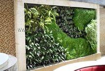Jardín Vertical Heladería Globos, Cochabamba, Bolivia. / El Jardín Vertical de la Heladería Globos, se ha realizado en colaboración con el arquitecto Leonardo Terán. Los tres Ecosistemas Verticales forman un conjunto de 36 m2 , con 1000 plantas de 25 especies de sotobosque tropical. El reto de estos muros verdes, radica en los bajos requerimientos lumínicos y en la cuidada selección de especies para que se adapten a las particularidades de estos Jardines Verticales. Os dejamos con unas imágenes tomadas 3 meses después.