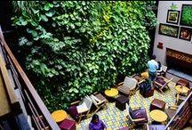 Jardín Vertical interior de la Cafetería Juan Valdez, Bogotá, Colombia / El Jardín Vertical interior, del exclusivo café de esta icónica cafetería del centro de Bogotá,  tiene una superficie de 33 metros cuadrados y se compone de 1000 plantas aráceas de sotobosque tropical.  Este muro verde busca crear un ambiente de tranquilidad en la zona del patio del café, mediante un ecosistema vertical natural.  Una brillante aplicación de la patente de Paisajismo Urbano, fruto de la colaboración con Groncol.