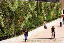 Jardín Vertical Universidad de los Andes, Bogotá, Colombia. / El Jardín Vertical de la Universidad de los Andes consta de 127 metros cuadrados, y se compone de 3500 plantas pertenecientes a 30 familias en su mayoría autóctonas. La función de esta fachada vegetal es la de servir de puente entre la sede antigua de la universidad y el nuevo edificio de atención al público. Realizado en colaboración con nuestros compañeros de Groncol.