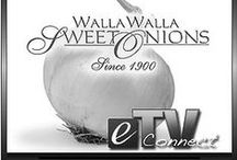 Walla Walla Sweet Onion Festival / Another Walla Walla Sweet Onion Festival will soon be here....June 21st and 22nd, 2014 in historic Downtown Walla Walla!