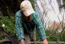 Jardines Verticales – investigación en Colombia (Cundinamarca) – Selva de Chicaque / En el 2011, Ignacio Solano y el equipo de Paisajismo Urbano se desplazaron al bosque de niebla de Chicaque.