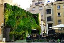 Jardín vertical y azotea verde en Elche / Este jardín vertical se encuentra ubicado en la pared medianera de la casa colindante a la Calahorra. Tiene una superficie de 100 metros cuadrados y cuenta con más de 3000 plantas.