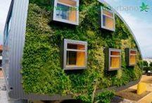 Fachadas vegetales en Alhaurín de la Torre, Málaga / Ecosistema vertical de 222 metros cuadrados compuesto por dos fachadas vegetales. Para realizarlo se han utilizado más de 6.000 plantas.