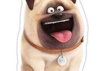 MEL!!!!!! / Mel from Secret Life Of Pets!!!!!