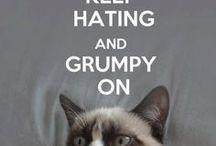 Grumpy Cat!!! / Stay grumpy, like Grumpy Cat or Tartar Sauce.