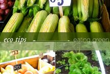Green Living / Go Green or Go Home: These tips and articles focus on Green Living.  We also highlight some of our favorite Green companies and products.  If you are a Green Blogger or Eco-friendly + Certified Organic Company and would like to increase the number of parents and families viewing you helpful information, please kindly make a request to be added as a contributor.   Guest Contributors include many Green Living bloggers: Green Moms Collective, Green4u, Living Natural Today, and Eco Snackbag. / by Green Family Hub
