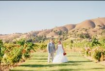 Vineyard Weddings / The Perfect Venue for a Perfect Wedding. Selecting a venue for your wedding is the most important decision you must make when planning your wedding ceremony and reception. You will find that once you determine your wedding venue, the other details fall more easily into place. Kirigin Cellars provides the perfect foundation to help you plan, create and ultimately enjoy the wonderful wedding you desire.