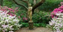Dům a zahrada - House and garden / - nápady na výzdobu domu a zahrady