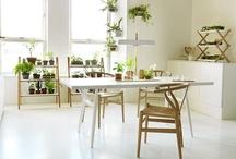 Kekkilä Koti & Piha -uutuustuotteet / Vihreä koti ympäri vuoden Kasvata itse superruokaa tai sisusta kasveilla - ja voi hyvin!