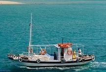 Incredible Crete / Welcome to Incredible Crete