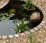 Trädgård / utomhusmiljöer - övrigt / Trädgård, växter och odling /  Gardens and gardening