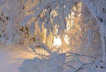 Winter is a wonderland