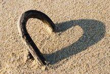 Hearts / overal om ons heen natuurlijke liefde ;)