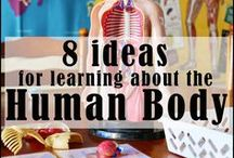 UNIT STUDY Human Body / Homeschool Unit Study about the Human body for Elementary Age