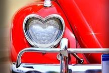 A heart full of