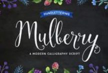 Mulberry Script / Mulberry is a beautiful handwritten calligraphy script that comes with lovely alternates, ligatures, extras and ornaments. Choose between Mulberry Script or Mulberry Script Pro and two font weights (Regular/Bold).