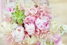 8 Flori