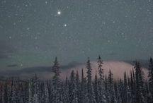 ••Winter Wonderland••