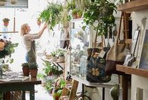 Plant Jungle at Botanique Workshop / As well as being an artisan gift shop and flower shop, at Botanique Workshop we curate and sell an unusual and lush selection of plants for your home. From large tropical statement  plants, to succulents, cacti and delicate ferns – we have the perfect plant for any interior. We also stock a range of unique pots.