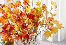 Fall Decor / Inspiration for decorating your apartment or townhouse for this autumn!
