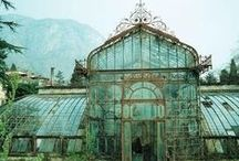 Glasshouse - Télikert