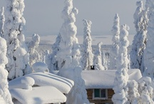 Canadian Winters....ski, snowboard, tobaggenning