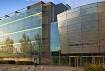 Chelmsford Campus  / Bishop Hall Lane, Chelmsford CM1 1SQ