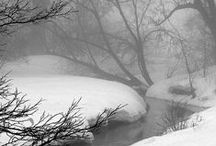 Winter / by Debbie DuRee