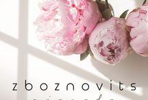 Zboznovits visuals / Everything in connection with Zboznovits visuals: brand identity, design and custom made wedding invitations. Enjoy! Instagram.com/zboznovits.visuals