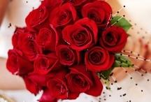 Wedding Bouquets Romantic Red / by Kaitlin Kozlowski