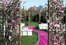 Wedding Outdoor Ceremony Ideas