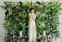 green & mossy / garden, fashion, outdoors, plants, terrariums, air plants, green walls, vertical gardens, green